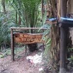 Photo de Sai-Ngam Botanic Garden Resort