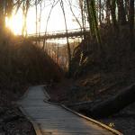 Trolley Trail 9