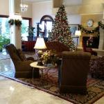 Lobby was nicely decorated for the holdays.