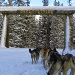 Great Divide sled tours