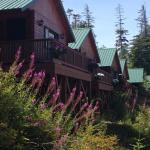 Bear Cove Cottages Resort Foto