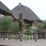 Photo of Grassland Bushman Lodge