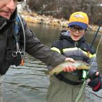 brown trout on the Provo River