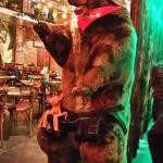 Bear at the Bar