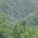 Viaduc des Rochers Noirs