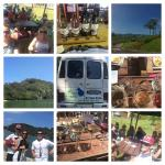 Go Kiwi Shuttles