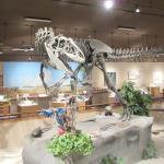 Dakota Dinosaur Museum, Dickenson, ND