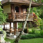 chambre + terrasse