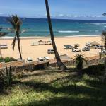Photo de Jeff's Palm Resort