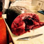 Fresh tuna from mediterraneo