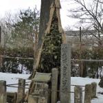明治天皇お立ち寄りの石碑
