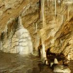 Niedzwiedzia Cave close to the castle