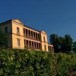 Villa Ludwigshoehe