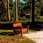 Benches along the trail