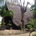 Windy bungalow