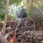 Inside of Eilat's rain forest