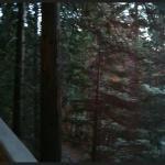 Foto de Yosemites Four Seasons