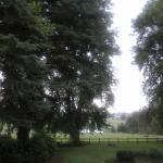 Little Milton View