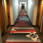Hallway, nice new carpet