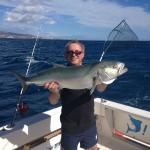 Bluefish 8 kg caught using live bait