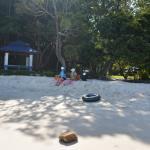 Shaded area on beach