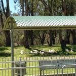 Lock 11 Murray River
