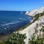 Cape Kidnappers - a great day out from Havelock House