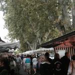 Market on Fridays