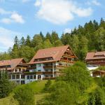 Wellnesshotel Forsthaus Auerhahn im Schwarzwald (120289370)