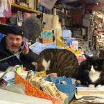Proprietor and cats