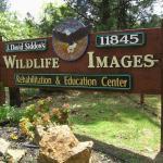 Wildlife Images - Rehabilitation & Education Center