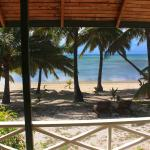 Paparei Bungalows - Absolute Beachfront