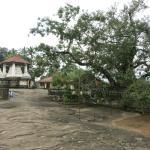 Terrain of temple