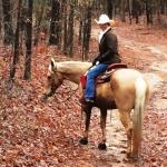 Woodland Trails 2