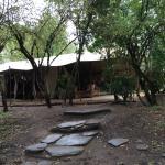 Foto de Naibor Camp