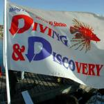 Diving Discovery...a real 5 stars diving center
