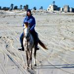 Photo of Mezraya Ranch