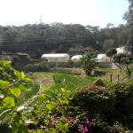 agriculture and sustainable living