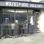 Wolfies of Hove