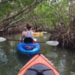 Gliding thru the mangrove tunnels!