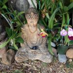 A statue of Buddha surrounded by beautiful orchids. There is a plethora of orchids here
