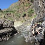 klimmen, klauteren en soms zwemmend