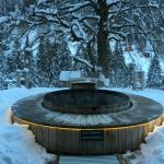 Hot tub - Jacuzzi entièrement naturel
