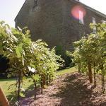 Baker-Bird Winery