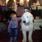 my son & harley dog (next door hotel) he loved him!