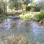 Las Cristalinas Aguas del Rio el Sabino