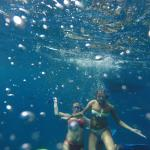 Great snorkeling all day long!