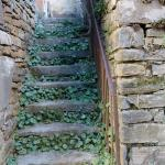 Stone stairs to abandoned schoolhouse.