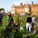 Helmingham Plant Fair