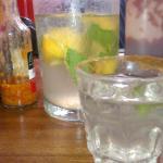 gin and lemonade- indian summer